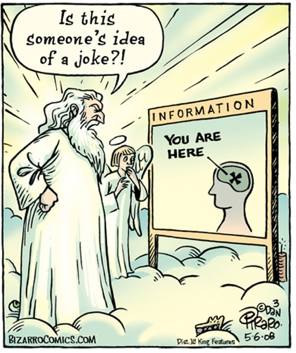 God: Is this someone's idea of a joke?! / Information: You are heare (in brain) - BIzarroComics.com, Dan Piraro, 2008