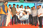 Bhale Bhale Magadivoy audio launch-thumbnail-13