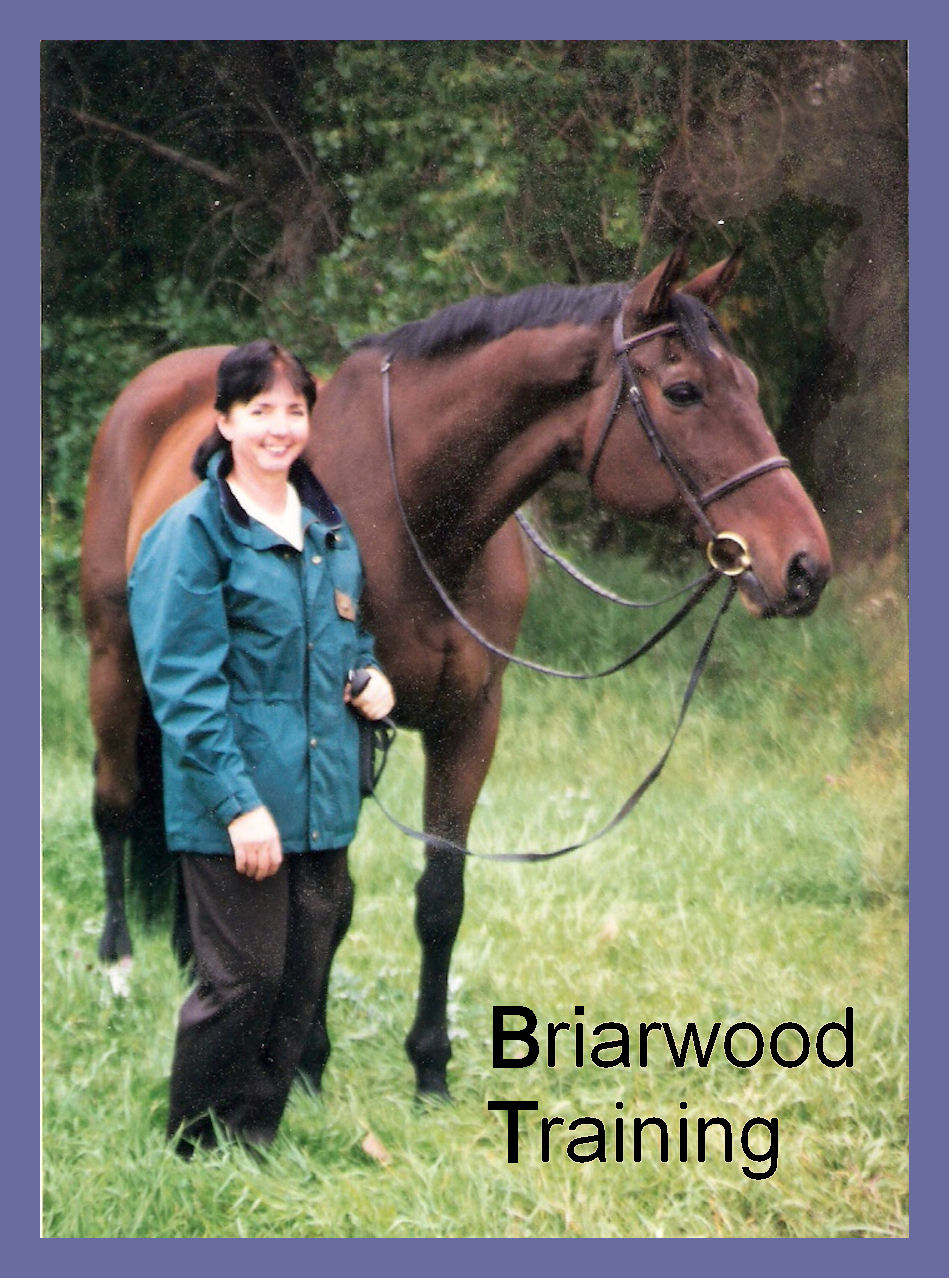 Briarwood Training