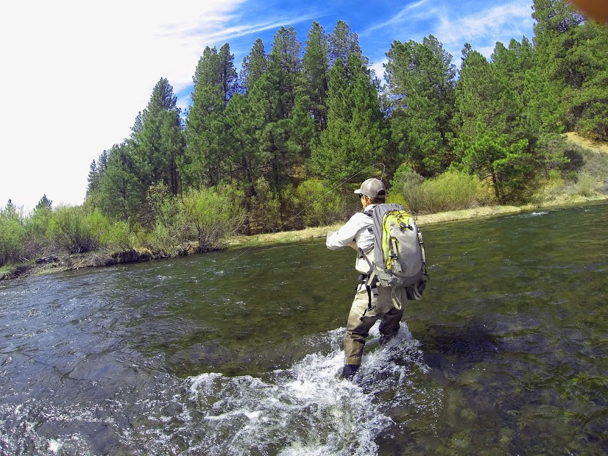 jon baiocchi fly fishing news middle fork feather river
