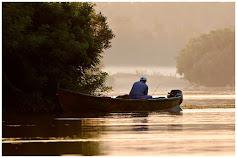 Dunajská delta