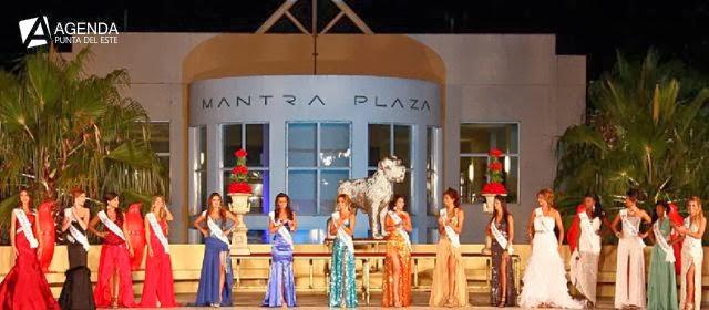Miss Atlántico Internacional 2014