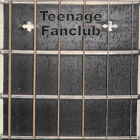 (1992) What you do to me: TEENAGE FANCLUB
