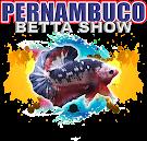 PERNAMBUCO BETTA SHOW