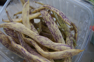 Dragon Tongue Beans from Shamba Farms at the West End Farmers Market taken by Knerq