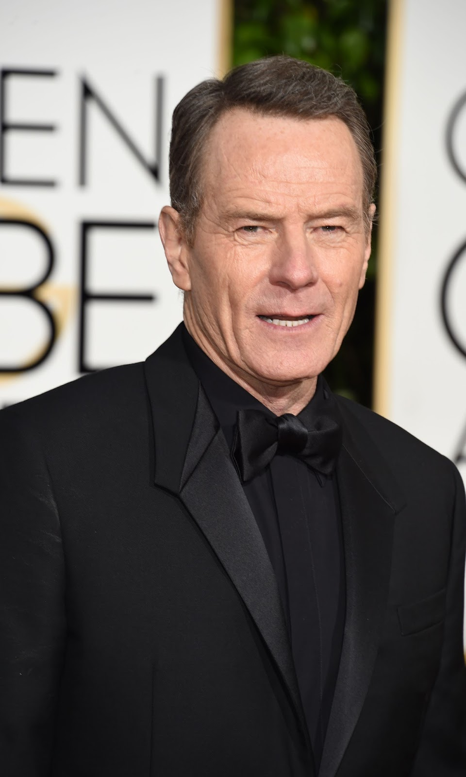 73rd Golden Globe Awards 2016 in HD Pictures