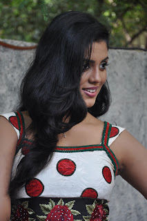 Iniya At Mouna Guru Press Meet %286%29.jpg