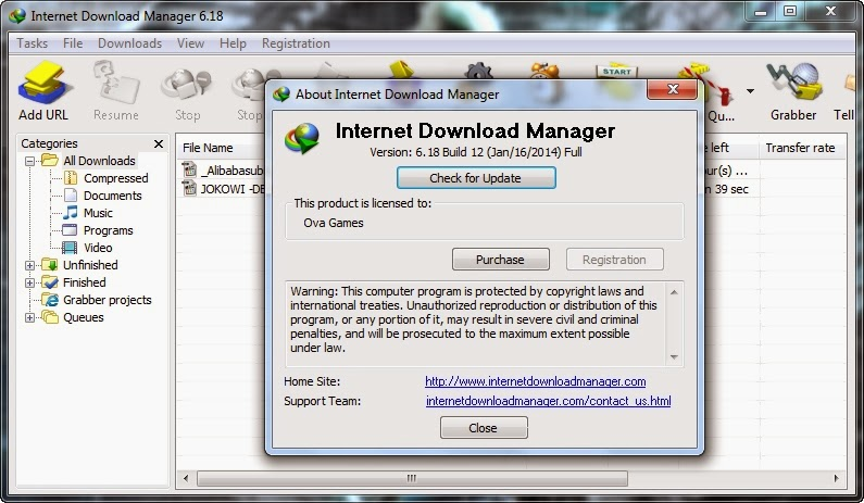 Internet Download Manager 6.18 build 12