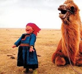 Hewan+lucu+yang+membuat+kamu+ketawa+6