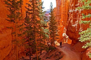 Bryce Canyon National Park (Best Honeymoon Destinations In USA) 1