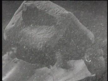 welles citizen kane globe rosebud crystal image