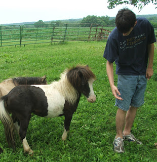Having problems with your man and mini stallion?