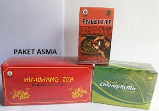 http://www.stockistnasajogja.com/2016/01/paket-penyembuhan-asma.html