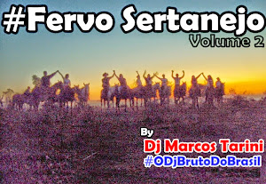 CD #FervoSertanejo Vol.2