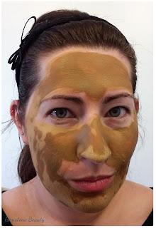 Zakia's Morrocan Ghassoul Clay Powder Mask