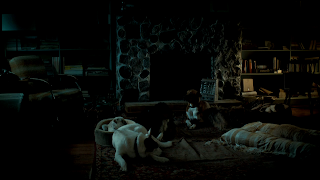Will Graham's stray dogs from Hannibal