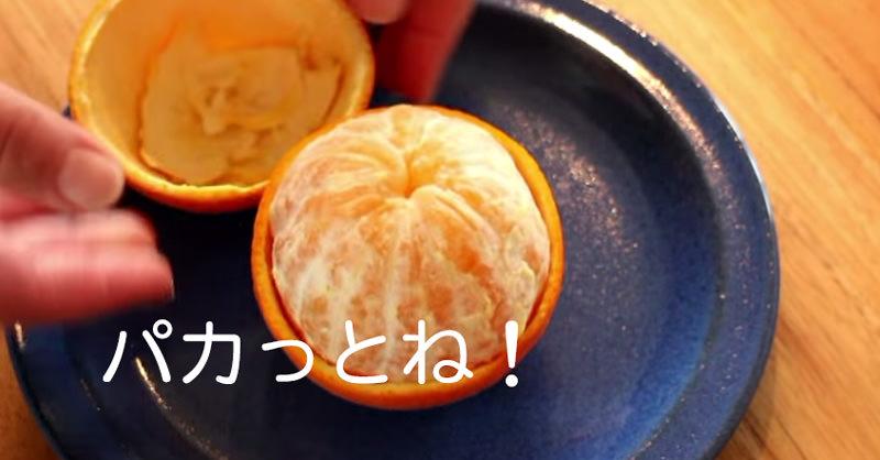 ちょっとめんどくさいけどやってみたい!オレンジの皮をパカっと取る方法