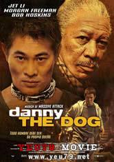 Chó Danny - Tháo Xích