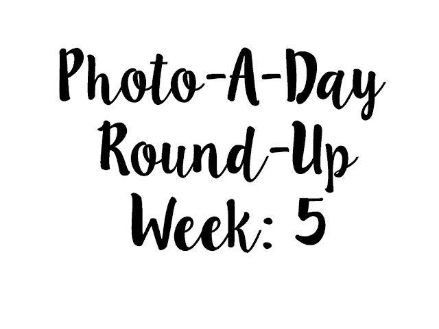Text reading Photo-A-Day Round-Up Week: 5