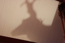 Shadowing.