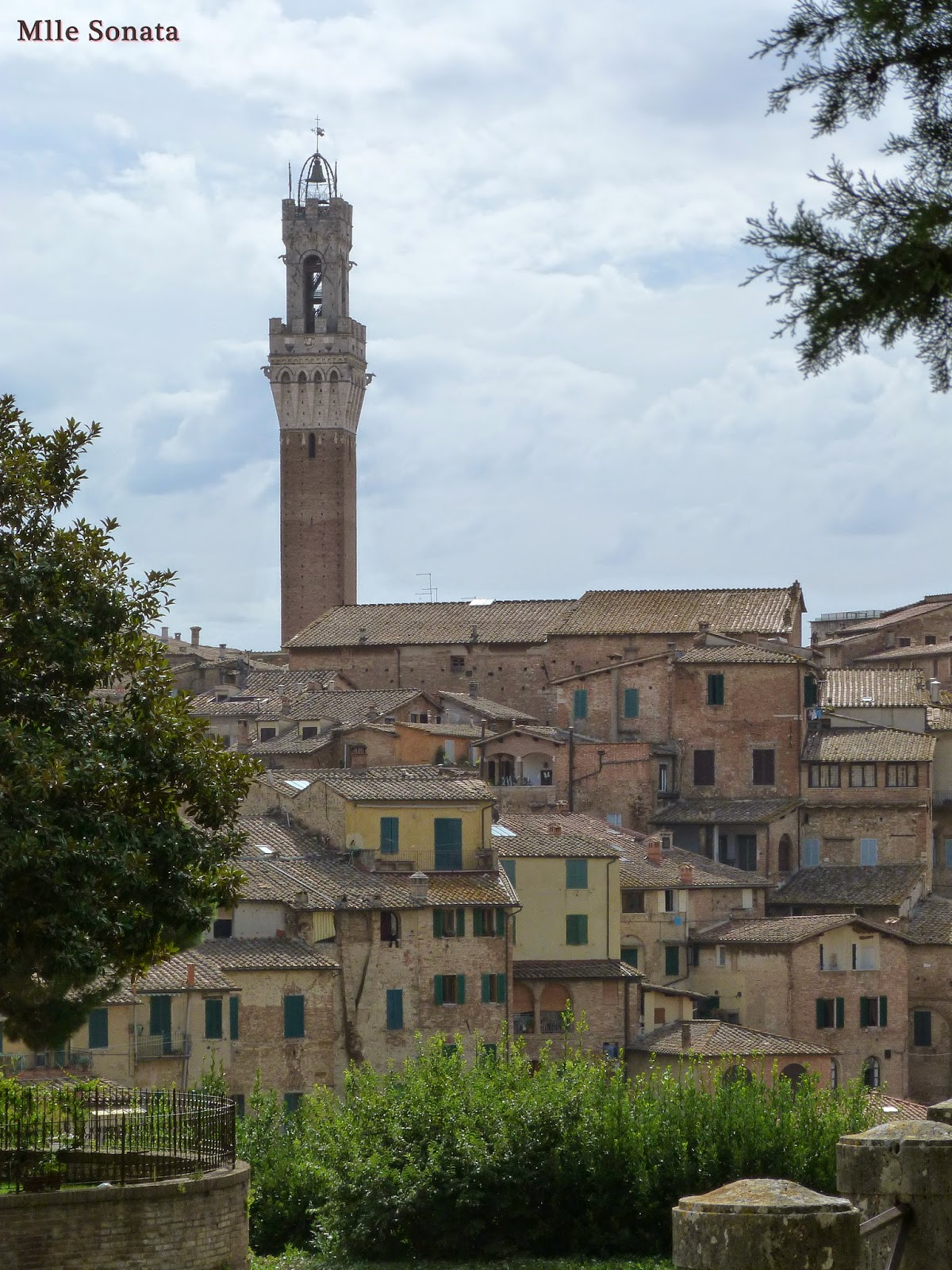 Voyage Italie Sienne Torre del Mangia