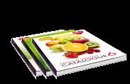 Katalogy Dedra online