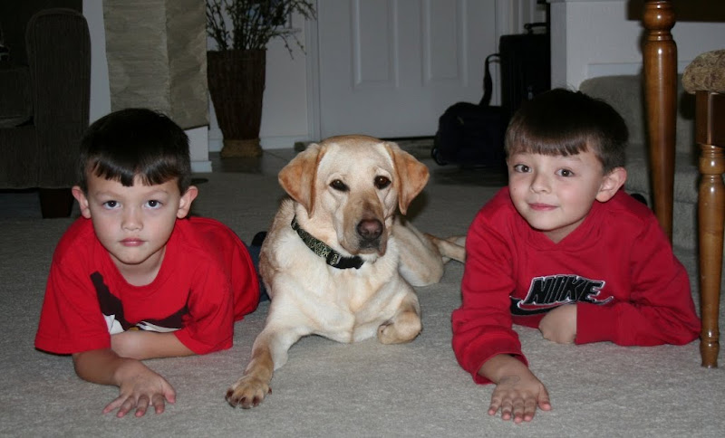 the boys and cabana laying on their tummies, looking forward at the camera, cabana has one paw tucked under her and the other paw out front, the boys have their hands in the same fashion