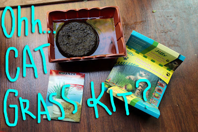 Cat-Grass_Kit_02