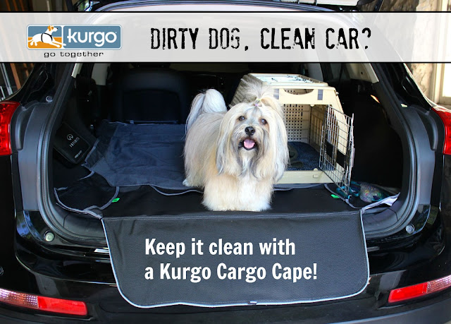 Rocco Havanese Kurgo Cargo Cape giveaway To Dog With Love