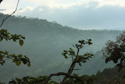 Mist covered hill valleys of BR hills, BRT tiger reserve, Karnataka
