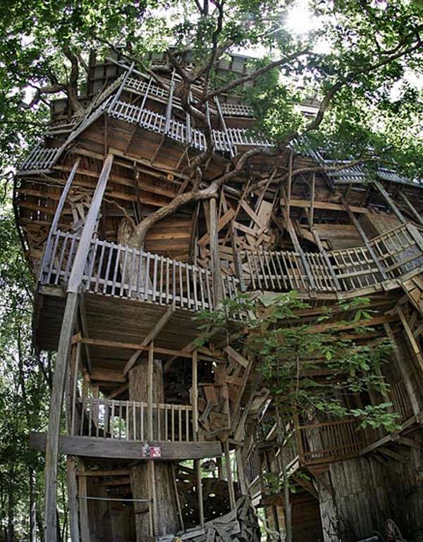 Funwithgallary world s largest tree house - Biggest treehouse in the world ...