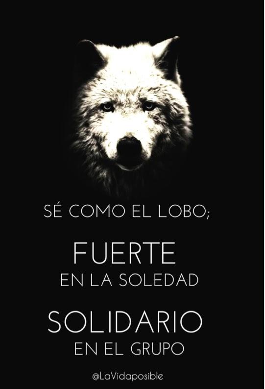 Echame a los lobos ... Lobo
