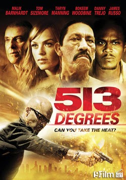 513 Degrees 2014 poster