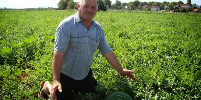 Ivan Bojka: Država nije sposobna zaštititi poljoprivrednog proizvođača