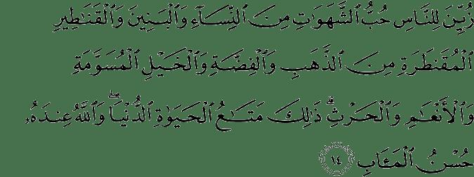 Surat Ali Imran Ayat 14