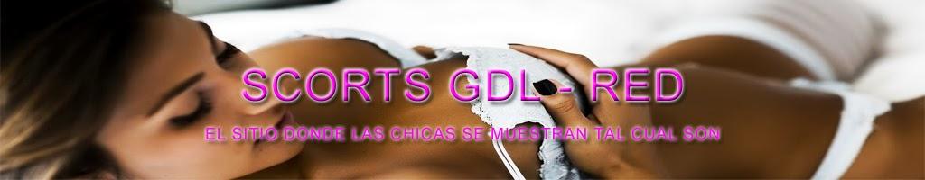 Scorts en Guadalajara - GDL Red - Chicas tapatias