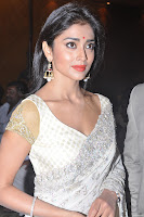 Shriya Saran Hot Saree Photos at Chandra Audio Launch