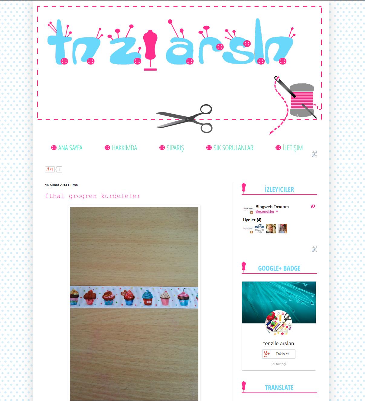 tnzlarsln blog tasarımı