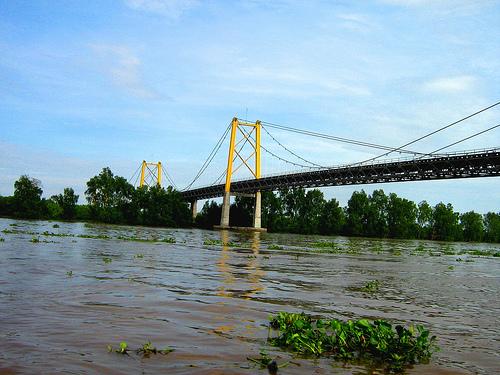Sungai+Barito.jpg