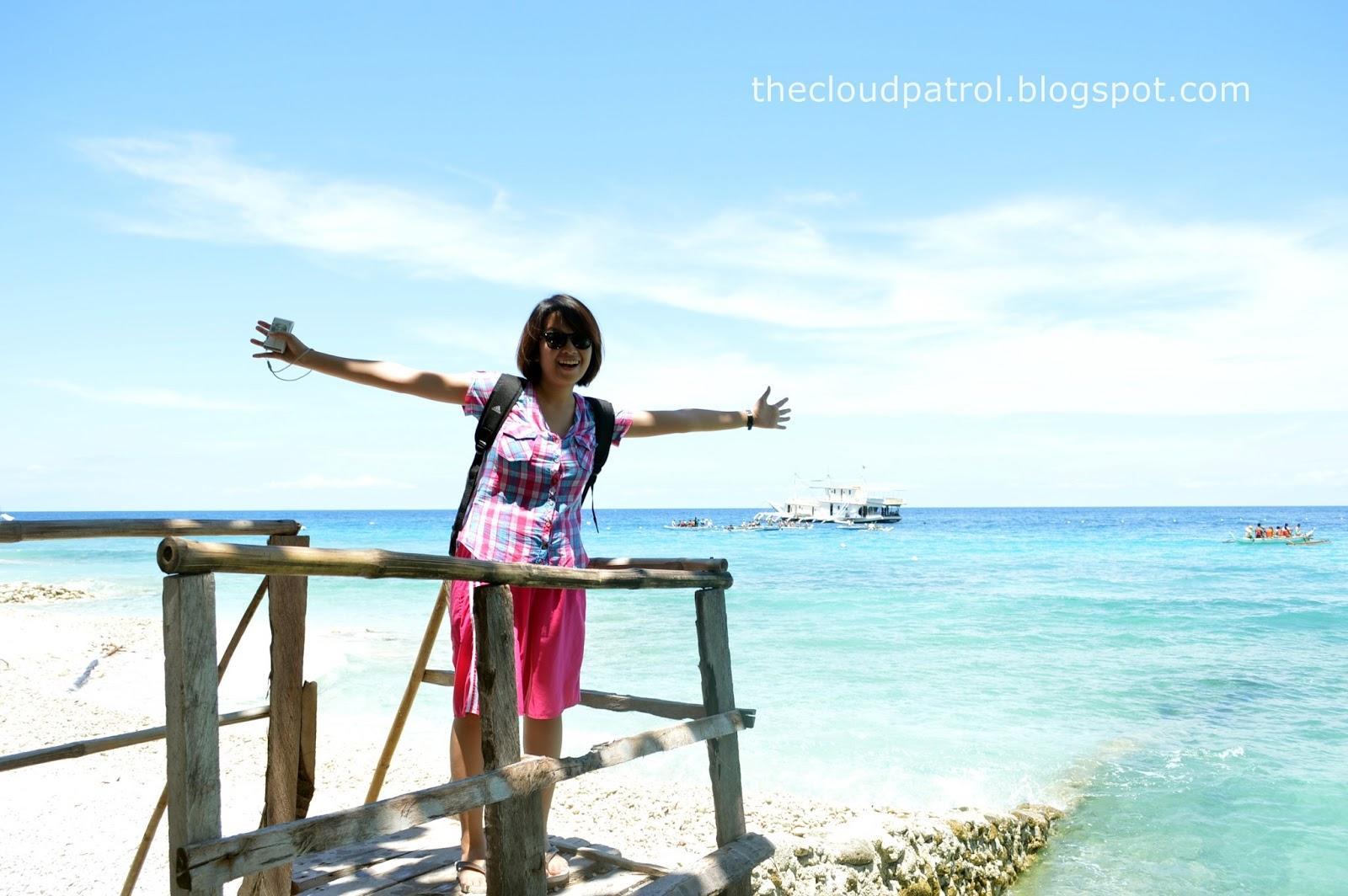 Butanding, whale shark, cebu, oslob, philippines, BCD