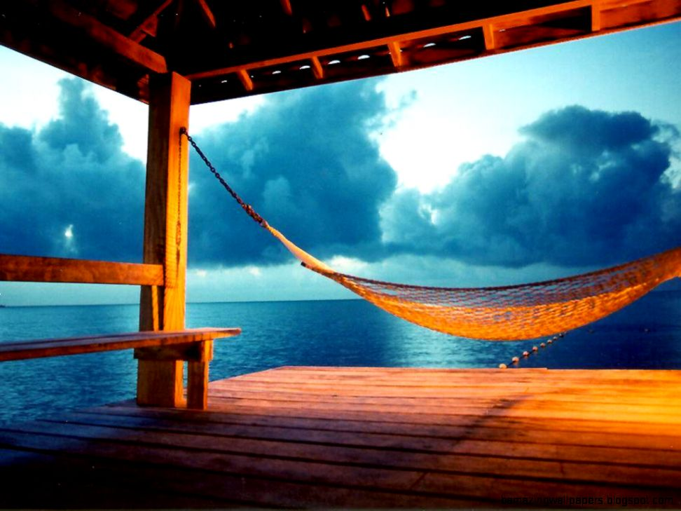 1000 images about Hammock on Pinterest  Hammocks On the beach