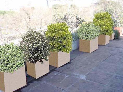 Reverdir jardineria y paisajismo dise o digital for Patios de invierno diseno