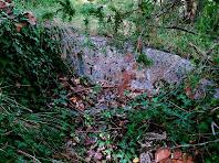 Restes d'una gran pica a prop de La Vila