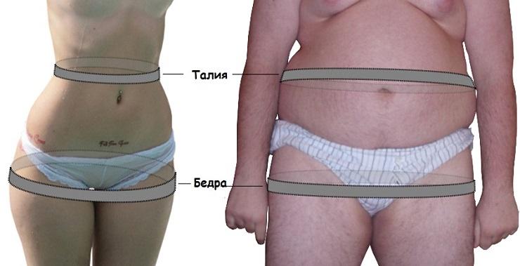 талия похудеть на 10 см в талии