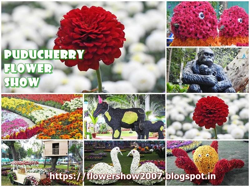 Pudhucherry Flower Show