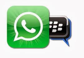 WhatsApp 809-785-6532