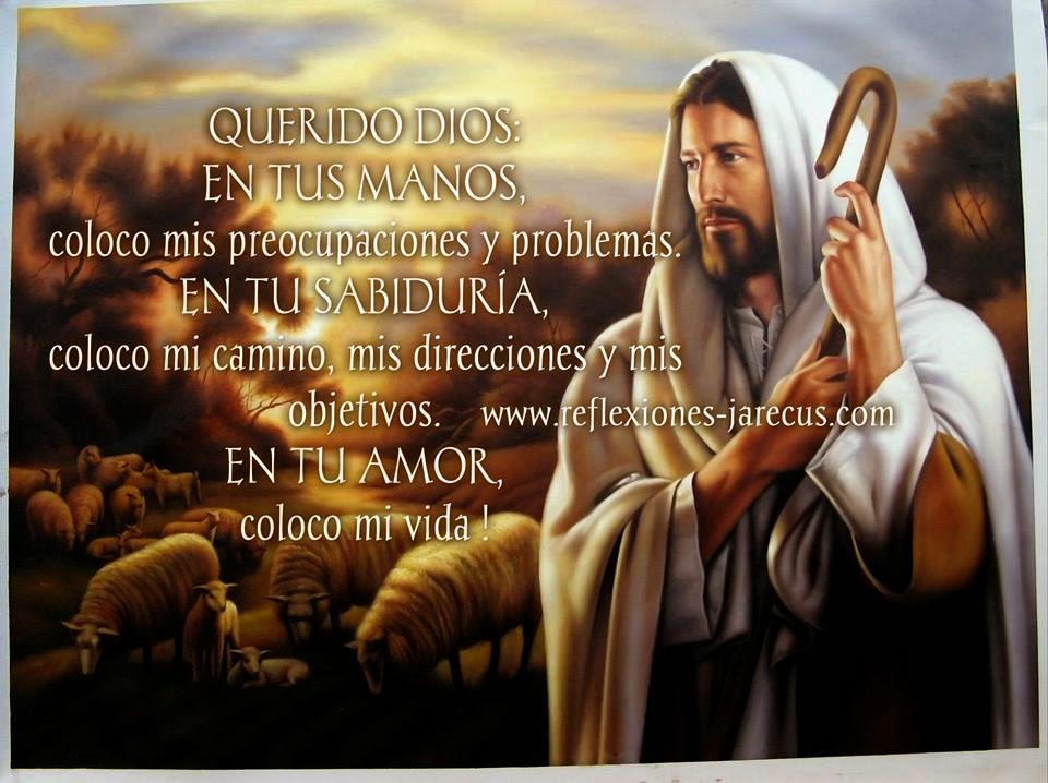 Querido Dios en tus manos coloco mis preocupaciones y problemas