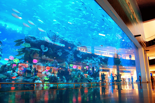 Dubai Aquarium and Discovery Centre
