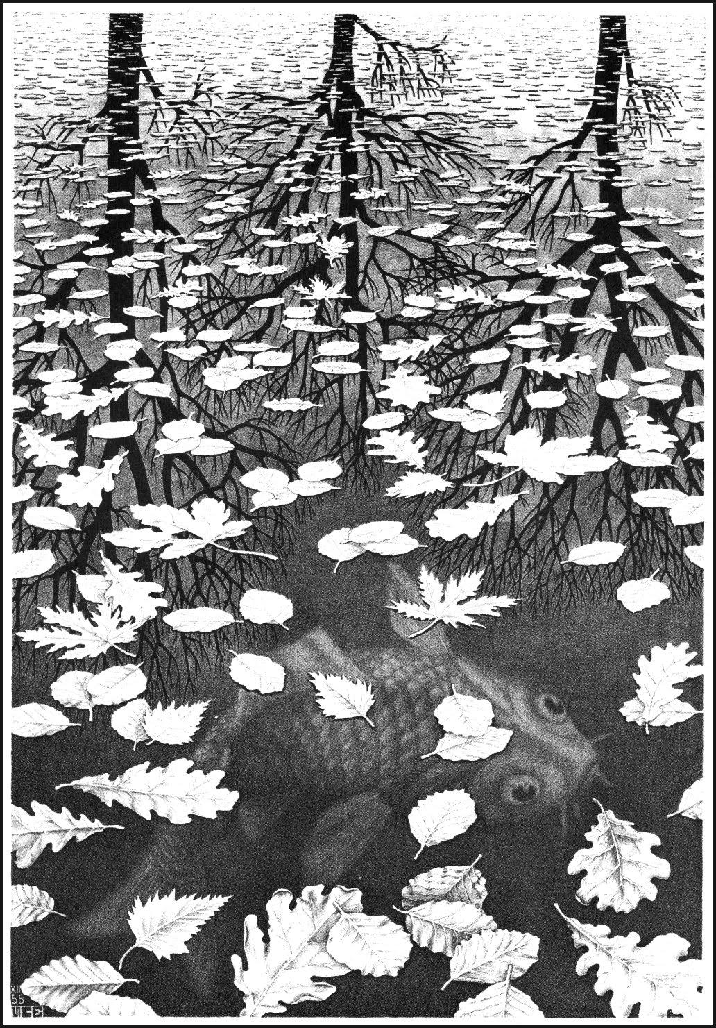 M c escher 1898 1972 null entropy for Escher metamorfosi