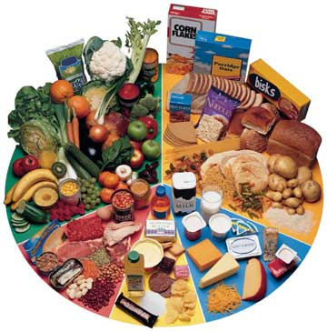 This picture shows the exact healthy foods to be eaten with the